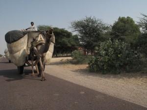 Pegando a estrada na índia