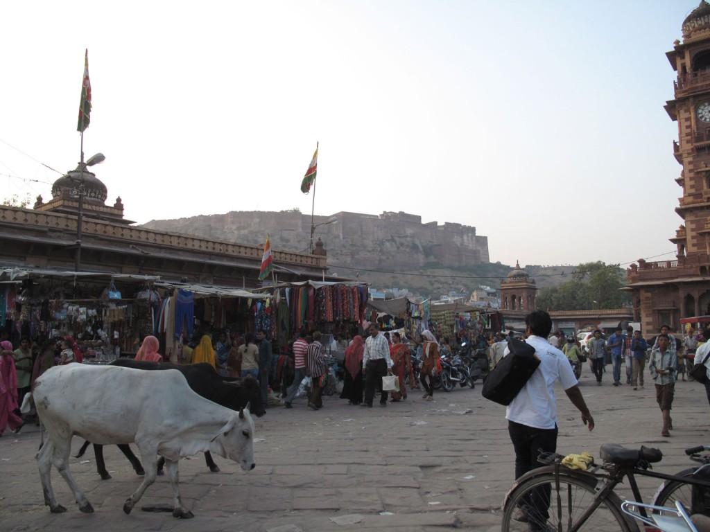 Fortaleza Mehrangarh, ao fundo da multidão, lixo e vacas