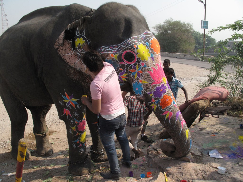 Indiano pintando o elefante