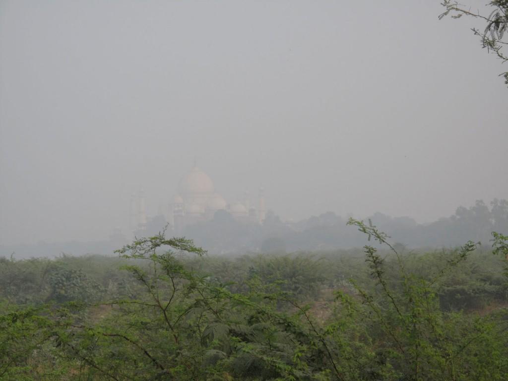 No meio de tanta neblina, mal conseguíamos distinguir o Taj Mahal