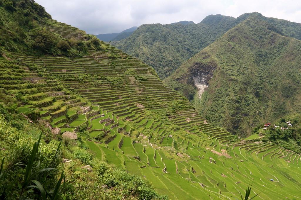 Terreços de Arroz Ifugao, o patrimônio da Unesco
