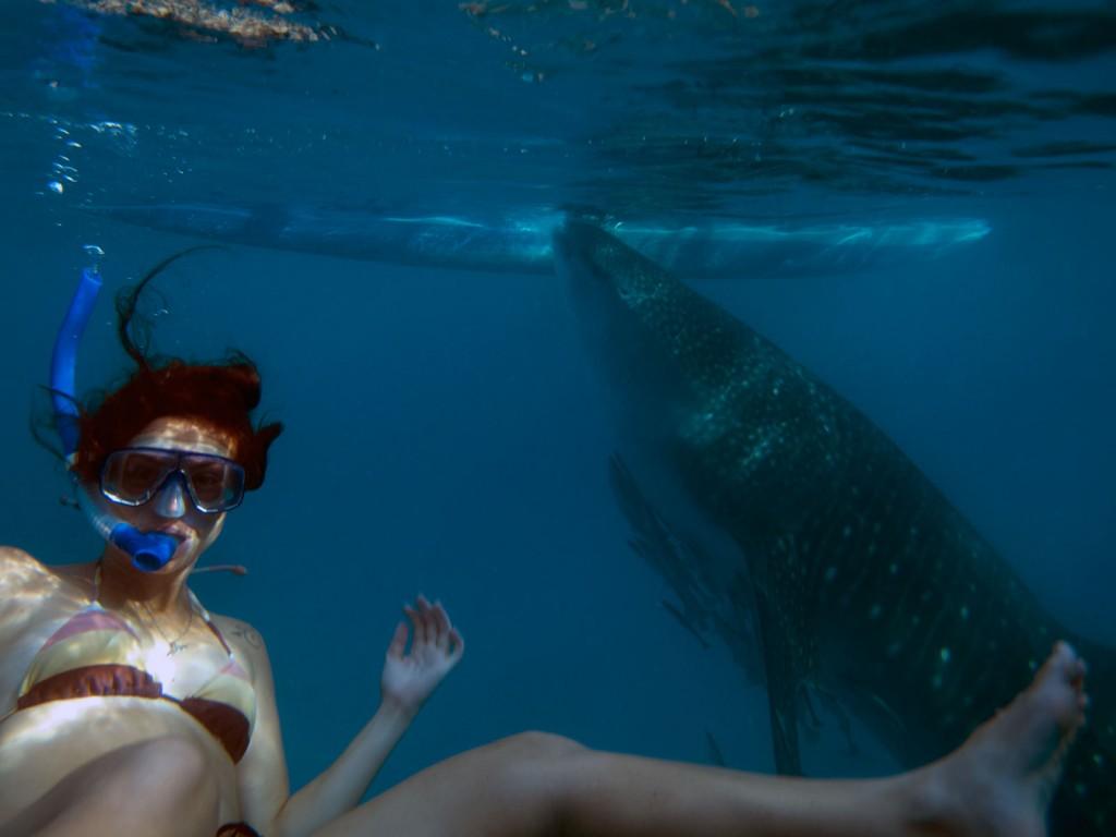 Kris com o Tubarão Baleia