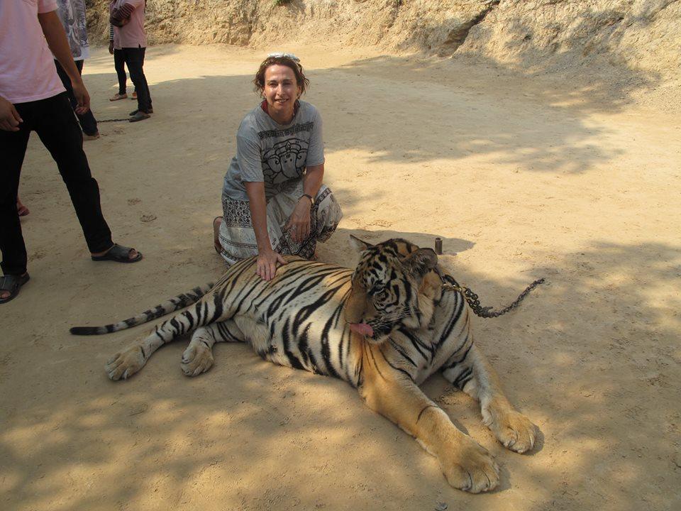Minha mãe com um dos tigres adultos