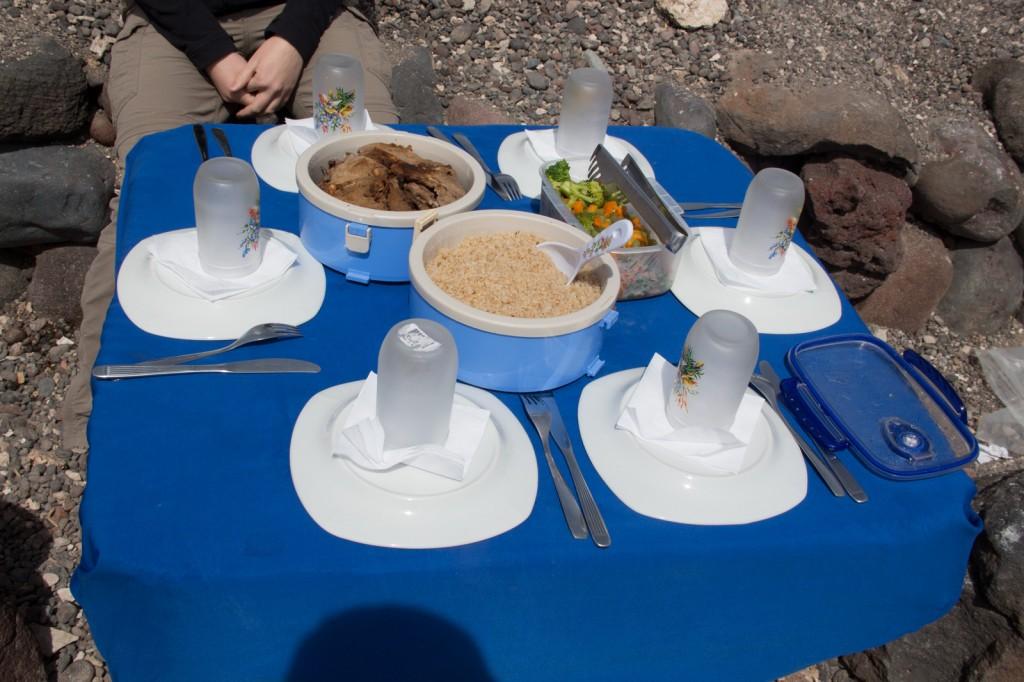 Almoço: carne de lhama, arroz e vegetais